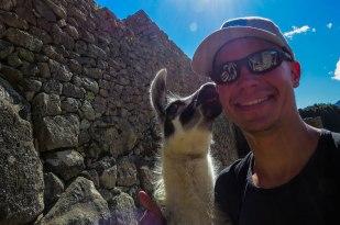 Machu Picchu - Got kissed by a llama