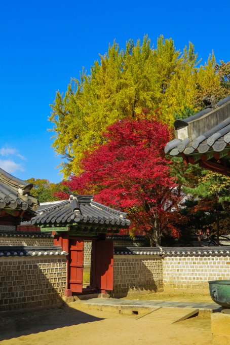 Korea - Fall brought some stunning colors into Seoul's most important shrine.